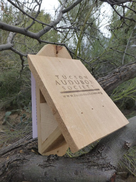 Lucy's Warbler Nest Box