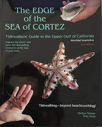 The Edge of the Sea of Cortez