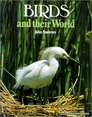 USED - Birds and Their World, Andrews