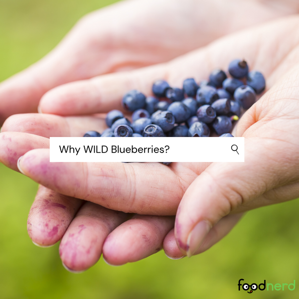 Wild Blueberries: The Next Big Superfood?
