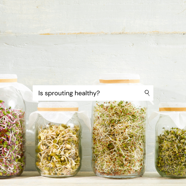 The Complete Guide to Sprouts