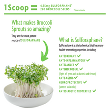 Load image into Gallery viewer, Elements: Organic Broccoli Sprout Powder
