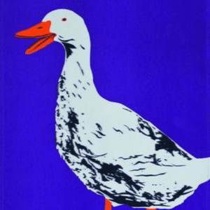 Duck Tea Towel - Vault Country Clothing