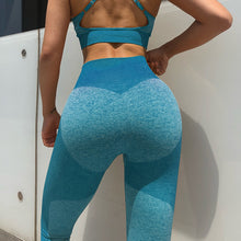 Load image into Gallery viewer, Seamless Leggings/Sports bras