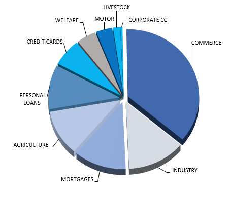 Consumer & Commercial Lending Market in Nicaragua - Ranking & Performance - Total Credit outstandings - Overview