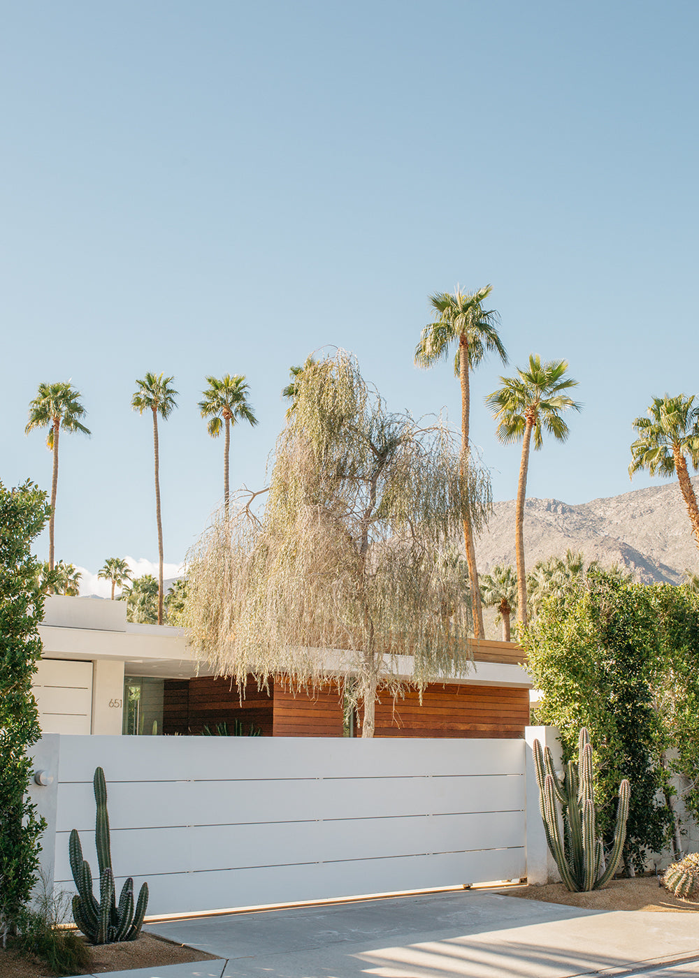 Palm Springs Architecture #2