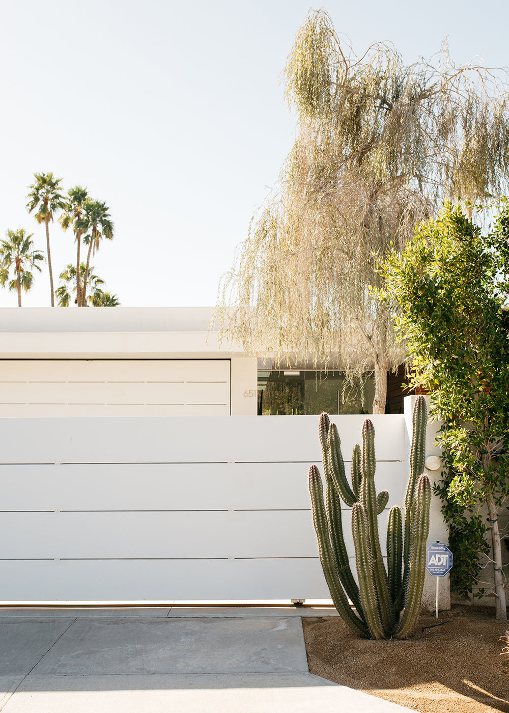 Palm Springs Architecture #3