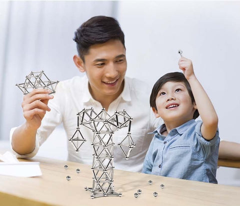 Magnets Stick & Balls Construction Puzzle Toy for Grownups