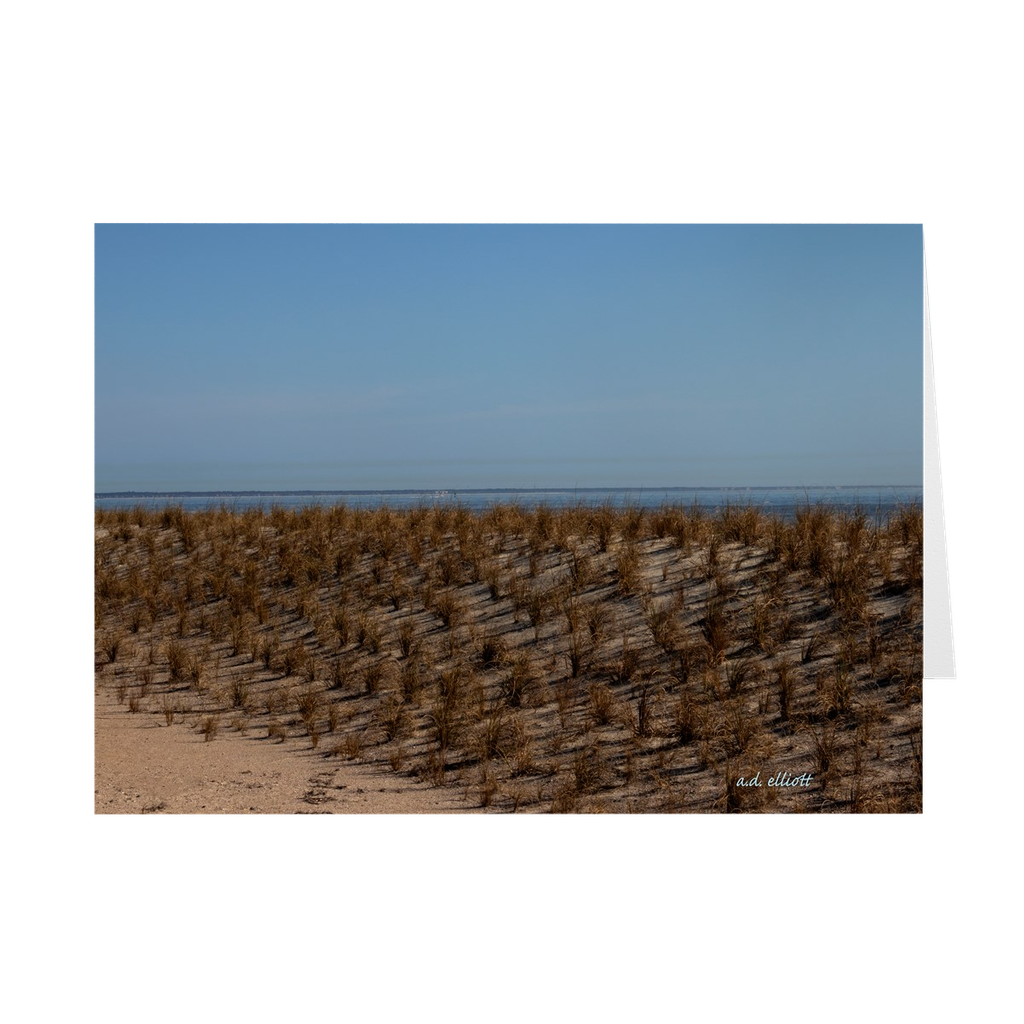 "The photograph ""Dunes at Tybee Beach"" imprinted on a 5x7 greeting card with an unprinted interior.  These high-quality paper cards come pre-folded, packed in cello sleeves per 10 cards, and includes a white envelope for each card. Works well with regular ballpoint pens after a short drying time."