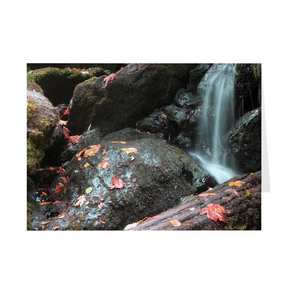 The photograph Trillium Falls imprinted on a 5X7 greeting card with an unprinted interior.  These high-quality paper cards come pre-folded, packed in cello sleeves per 10 cards, and includes a white envelope for each card. Works well with regular ballpoint pens after a short drying time.