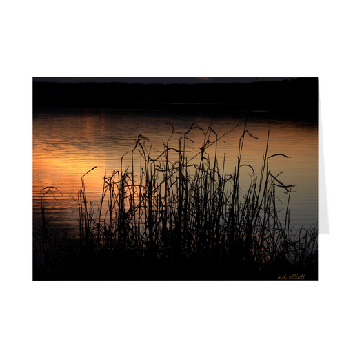 The photograph Sunset Through Wild Grass imprinted on a 5X7 greeting card with an unprinted interior.  These high quality paper cards come pre-folded, packed in cello sleeves per 10 cards, and includes a white envelope for each card. Works well with regular ballpoint pens after short drying time.