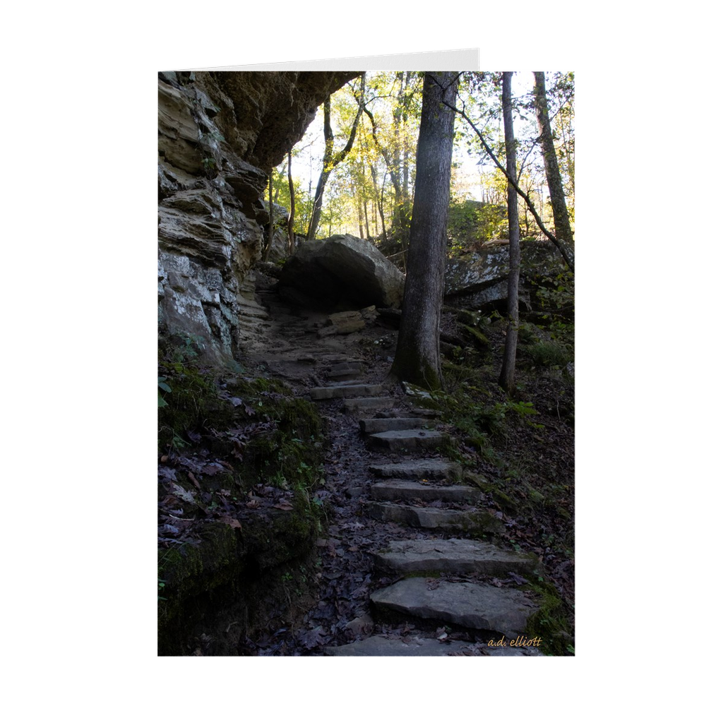 The photograph Stairway Autumn 2019 imprinted on a 5X7 greeting card with an unprinted interior.  These high-quality paper cards come pre-folded, packed in cello sleeves per 10 cards, and includes a white envelope for each card. Works well with regular ballpoint pens after a short drying time.