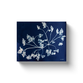 A cyanotype (blueprint) of wild grasses, taken by the photographer a.d. ellott.  Printed on high quality, artist-grade stock and folded around a lightweight frame to give them a gorgeous, gallery-ready appearance. With acid-free ink that will last without fading or chipping, Features a scratch-resistant UV coating. Wipes clean easily with a damp cloth or to remove dust, vacuum gently using a soft brush attachment.