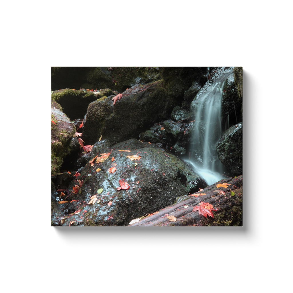 A long exposure photograph of Trillium Falls, Redwood National Park, California, taken by the photographer a.d. elliott.  Printed on high quality, artist-grade stock and folded around a lightweight frame to give them a gorgeous, gallery-ready appearance. With acid-free ink that will last without fading or chipping, Features a scratch-resistant UV coating. Wipes clean easily with a damp cloth or to remove dust, vacuum gently using a soft brush attachment.
