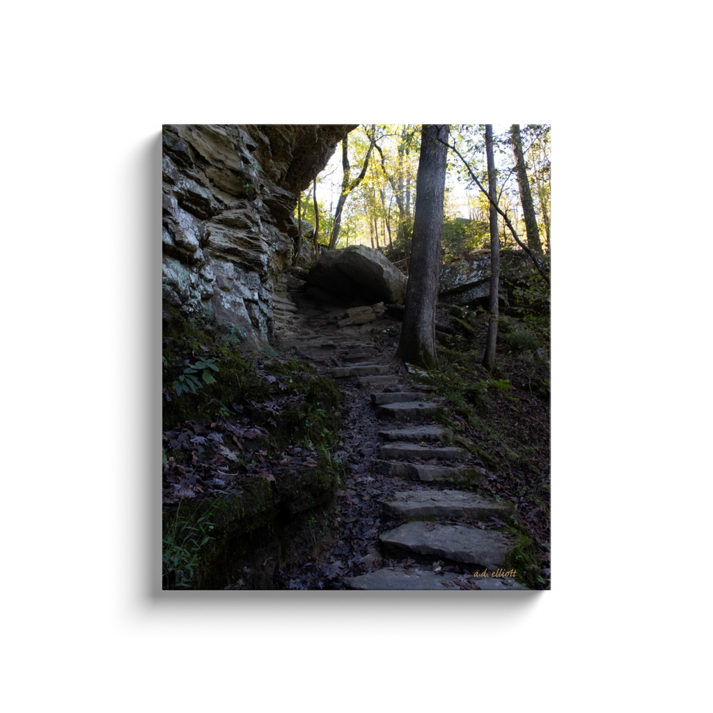 A landscape photograph of stone steps inset into a hill surrounded by autumn leaves. Taken by the Arkansas photographer a.d. elliott.  Printed on high quality, artist-grade stock and folded around a lightweight frame to give them a gorgeous, gallery-ready appearance. With acid-free ink that will last without fading or chipping, Features a scratch-resistant UV coating. Wipes clean easily with a damp cloth or to remove dust, vacuum gently using a soft brush attachment.