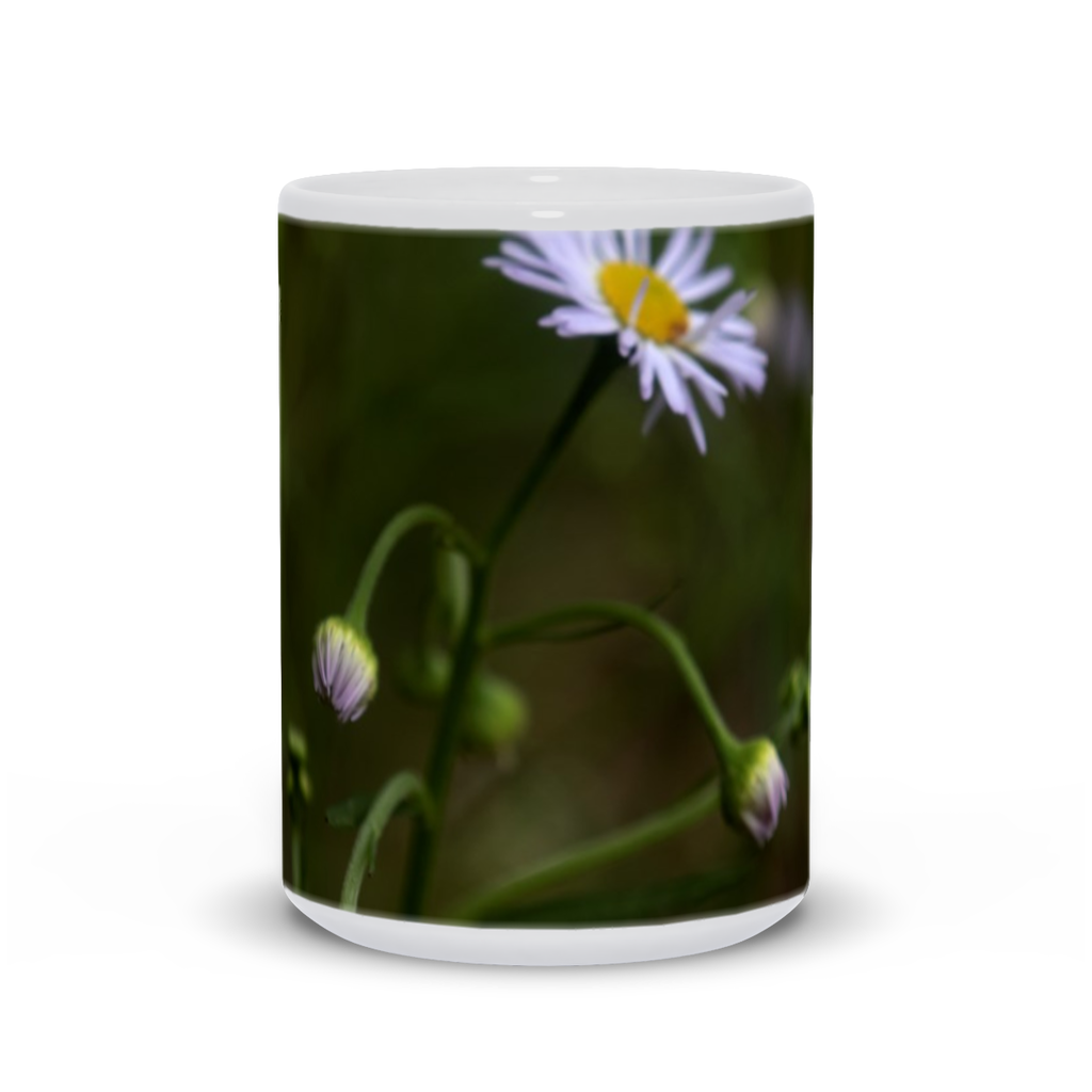 The photograph Arkansas Lazy Daisy 2020 imprinted on a 15oz coffee mug.  Add a bit of brightness to the morning routine with one of our high quality, dishwasher and microwave safe classic mugs made from quality ceramic with a comfortable handle.