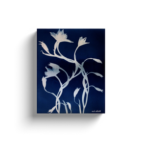 Cyanotype (blueprint) of wildflowers.  Printed on high quality, artist-grade stock and folded around a lightweight frame to give them a gorgeous, gallery-ready appearance. With acid-free ink that will last without fading or chipping, Features a scratch-resistant UV coating. Wipes clean easily with a damp cloth or to remove dust, vacuum gently using a soft brush attachment.