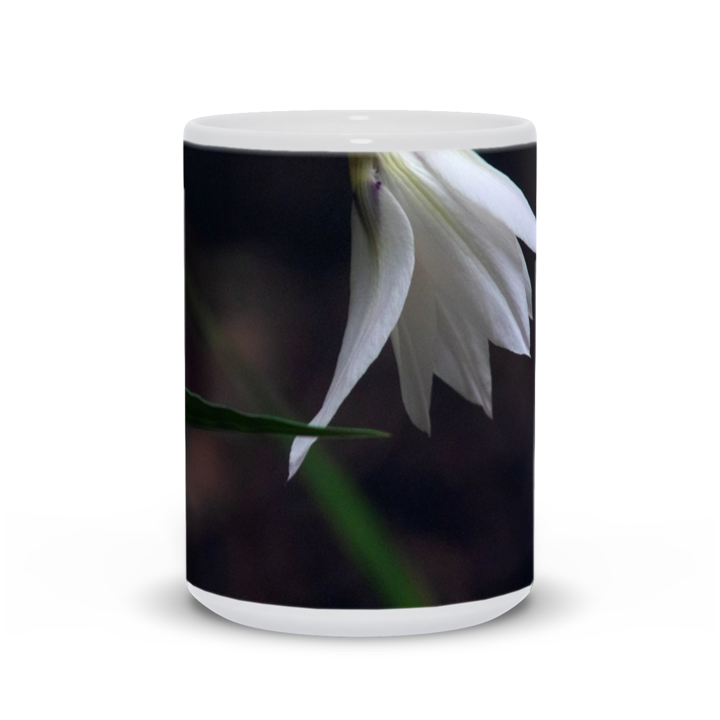 The photograph Abyssinian Profile imprinted on a coffee mug.  Add a bit of brightness to the morning routine with one of our high quality, dishwasher and microwave safe classic mugs made from quality ceramic with a comfortable handle.