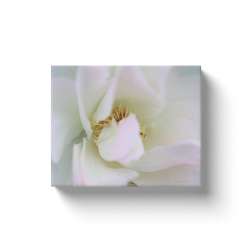 A macro photograph of a white rose with pink highlights.  Printed on high-quality, artist-grade stock and folded around a lightweight frame to give them a gorgeous, gallery ready appearance. With acid-free ink that will last without fading or chipping, Features a scratch-resistant UV coating. Wipes clean easily with a damp cloth or to remove dust, vacuum gently using a soft brush attachment.