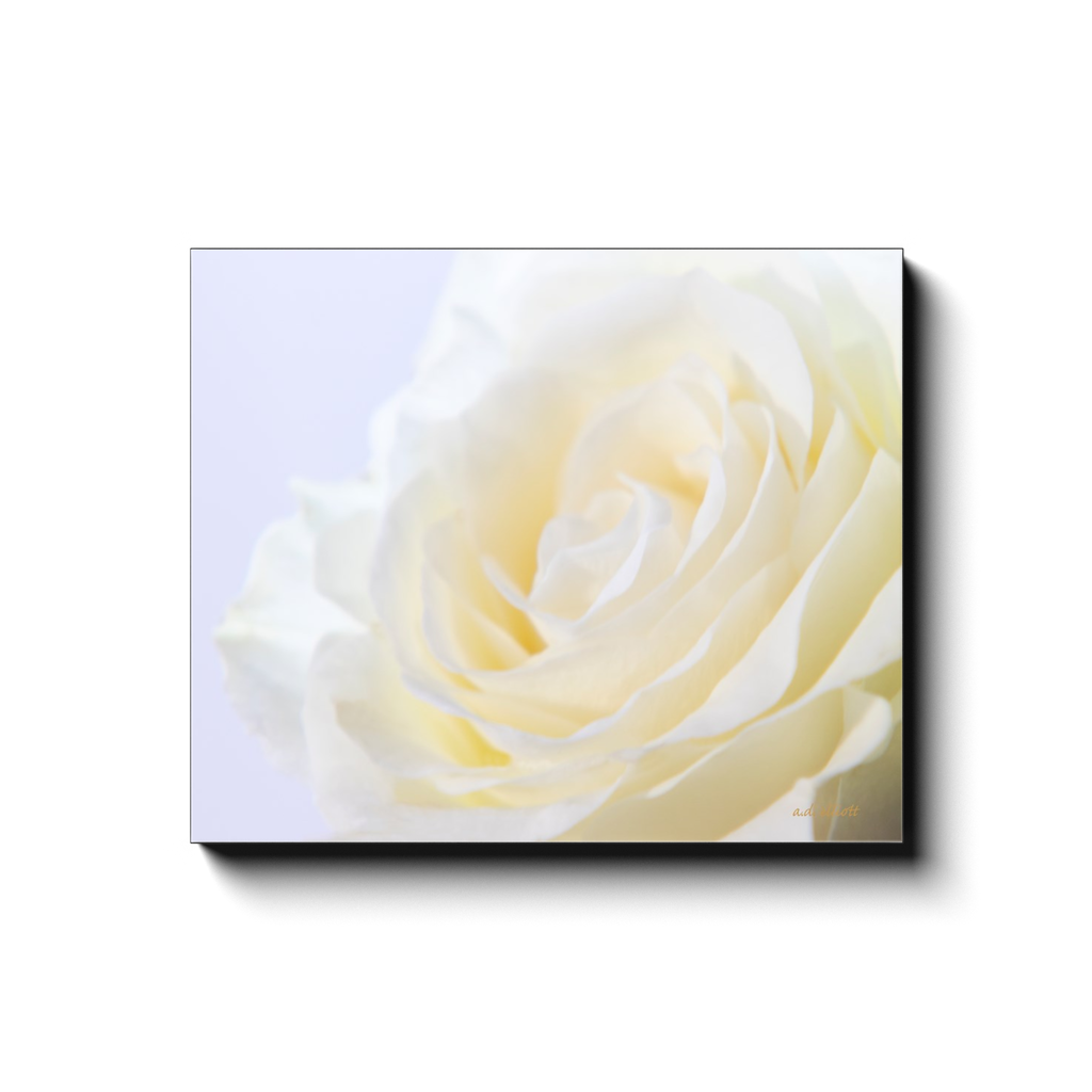 A macro photograph of a pale yellow rose. Taken by the Arkansas photographer a.d. elliott #TaketheBackRoads.  Printed on high quality, artist-grade stock and folded around a lightweight frame to give them a gorgeous, gallery-ready appearance. With acid-free ink that will last without fading or chipping, Features a scratch-resistant UV coating. Wipes clean easily with a damp cloth or to remove dust, vacuum gently using a soft brush attachment.