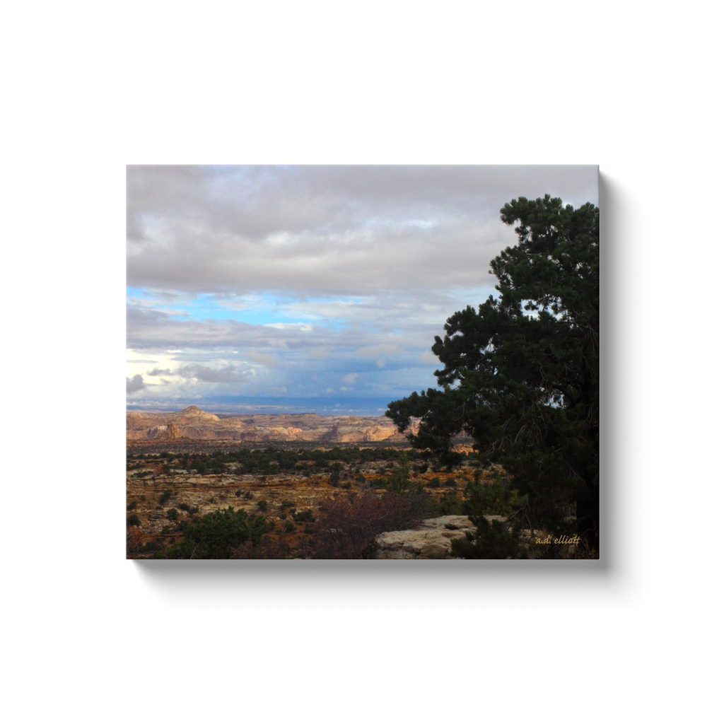 A landscape photograph of Devil's Canyon Utah. Taken by the Arkansas photographer a.d. elliott. #TaketheBackRoads  Printed on high quality, artist-grade stock and folded around a lightweight frame to give them a gorgeous, gallery-ready appearance. With acid-free ink that will last without fading or chipping, Features a scratch-resistant UV coating. Wipes clean easily with a damp cloth or to remove dust, vacuum gently using a soft brush attachment.