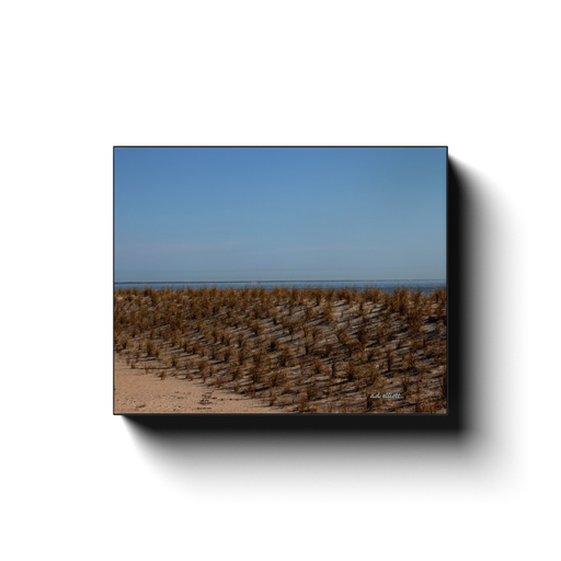 A landscape photograph of the dunes at Tybee Beach Georgia. Taken by the photographer a.d. elliott #TaketheBackRoads.  Available in sizes 8x10 to 24x30 and printed on high quality, artist grade stock and folded around a lightweight frame to give them a gorgeous, gallery ready appearance.
