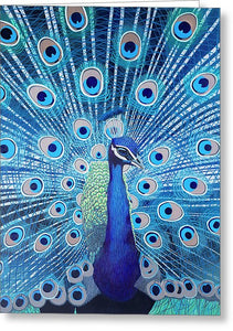 Blue Peacock - Greeting Card