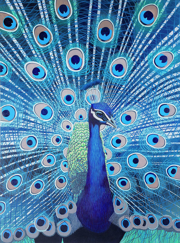 Blue Peacock - Art Print