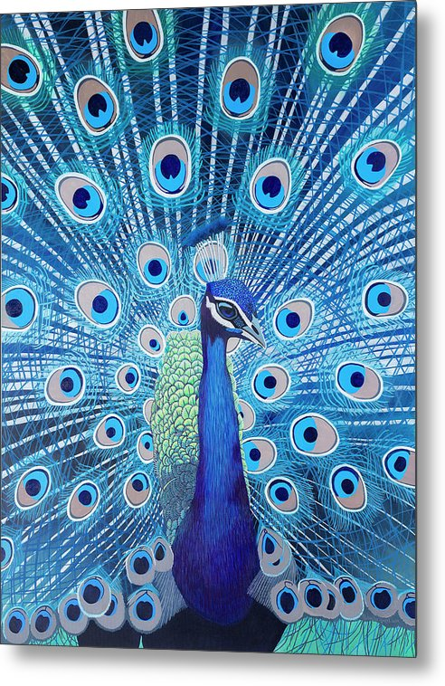 Blue Peacock - Metal Print