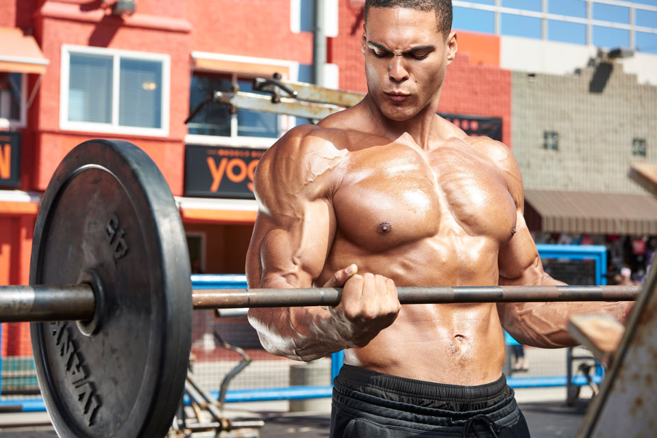 Muscle Beach Arm Workout With Ike Catcher