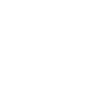 Stan Consulting leading Californian marketing experts