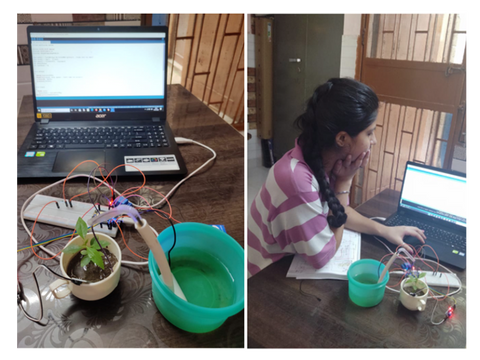 Making a plant weather monitoring system DIY experiment