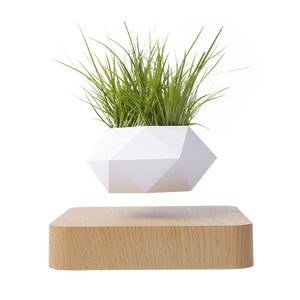 Magnetic suspension polygon flower pot floating potted rotation potted houseplant Bonsai - shop416.com