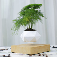 Load image into Gallery viewer, Magnetic suspension polygon flower pot floating potted rotation potted houseplant Bonsai - shop416.com