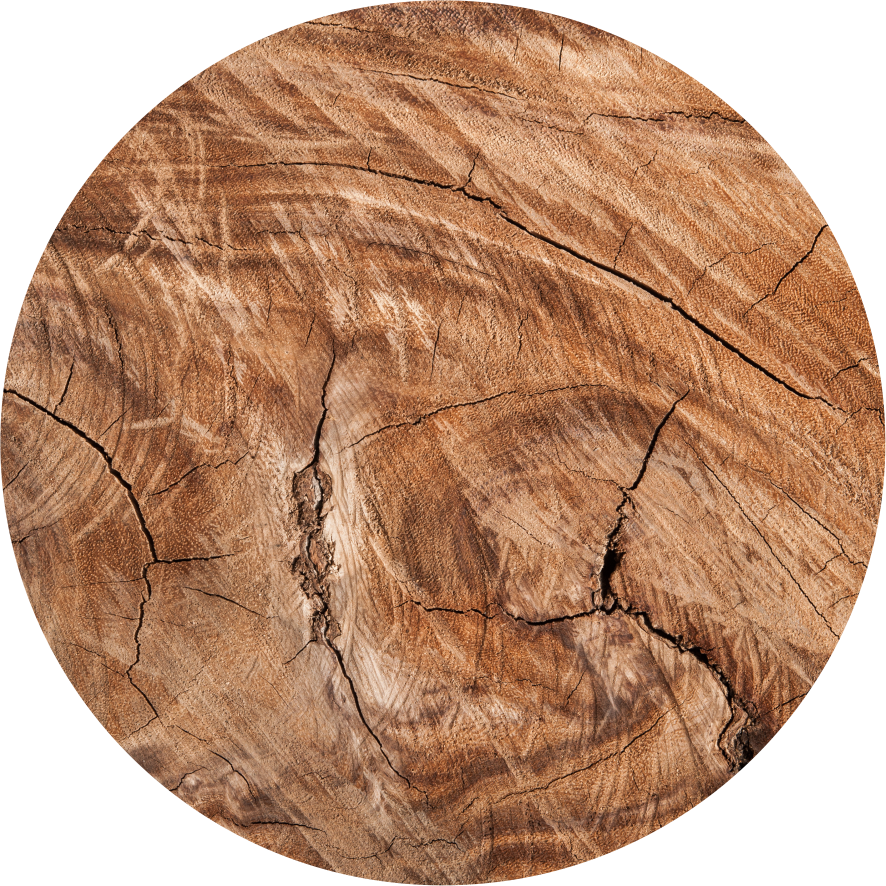 Magnetic Coasters - The Raw Wood