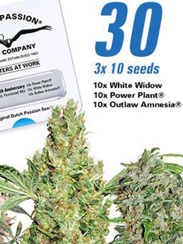 30th Anniversary Mix Feminised Seeds - Aceitronics