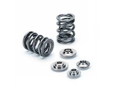 Supertech Dual Springs w/ Retainers B-Series