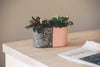 Beton bloempot small peach