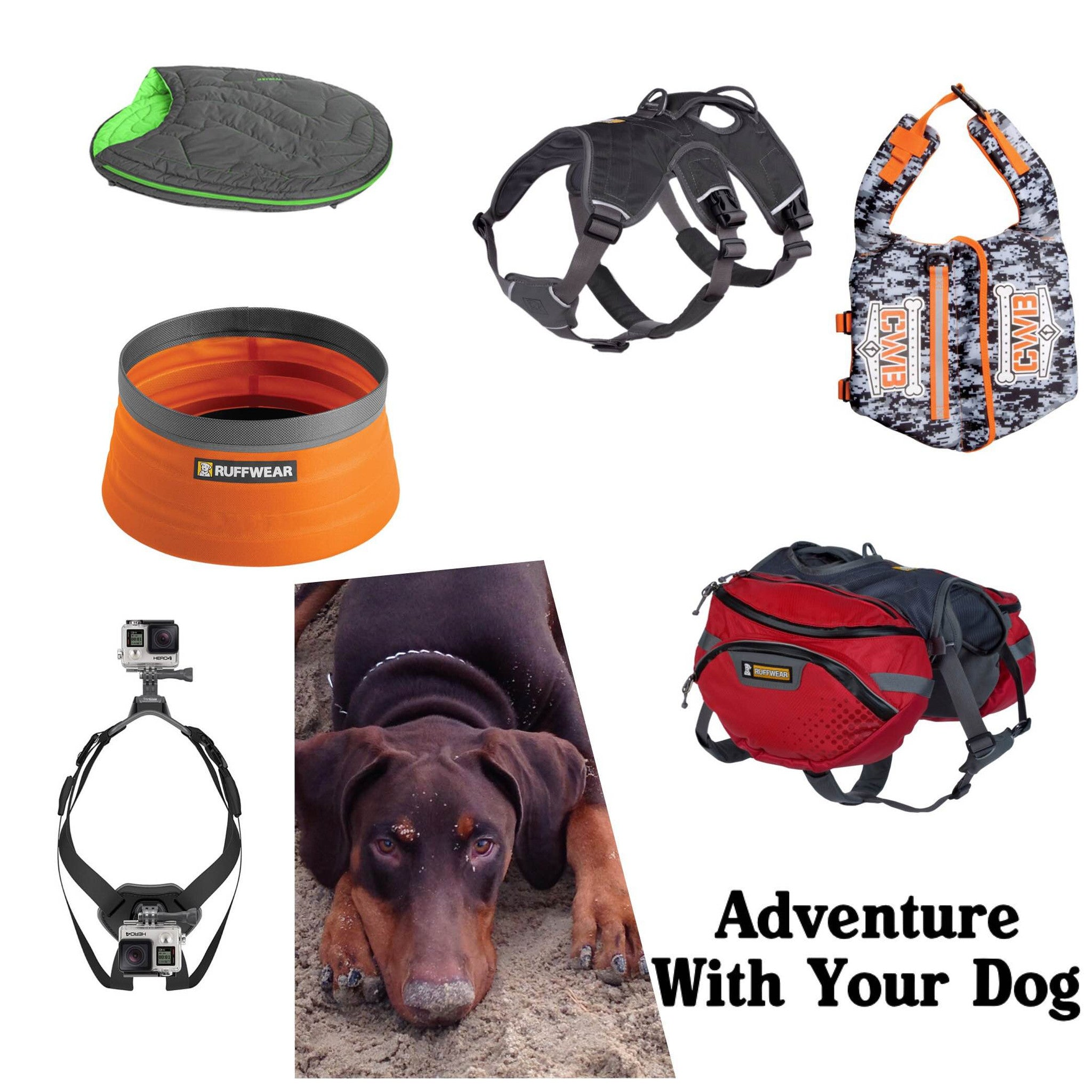 Gear Guide: Accessories for Outside Adventures With Your Dog