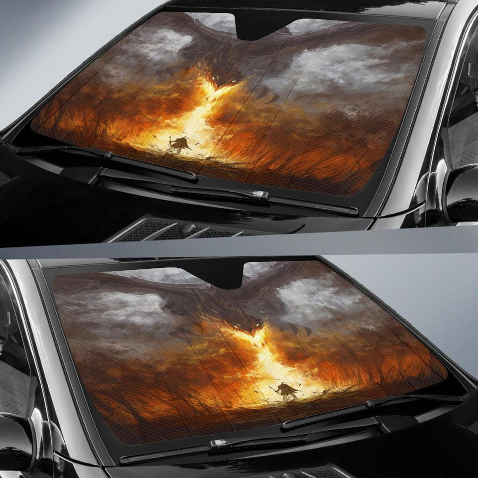 Dragon Auto Sun Shades