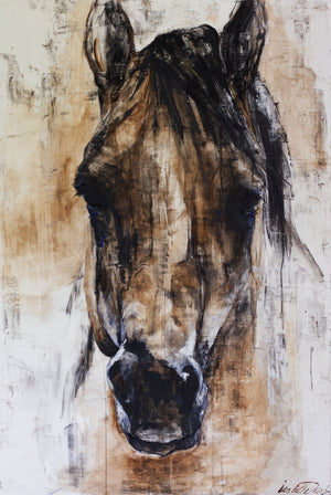Horses Don't Lie, original charcoal and dry pigments, horse bust, wild horse, mustang