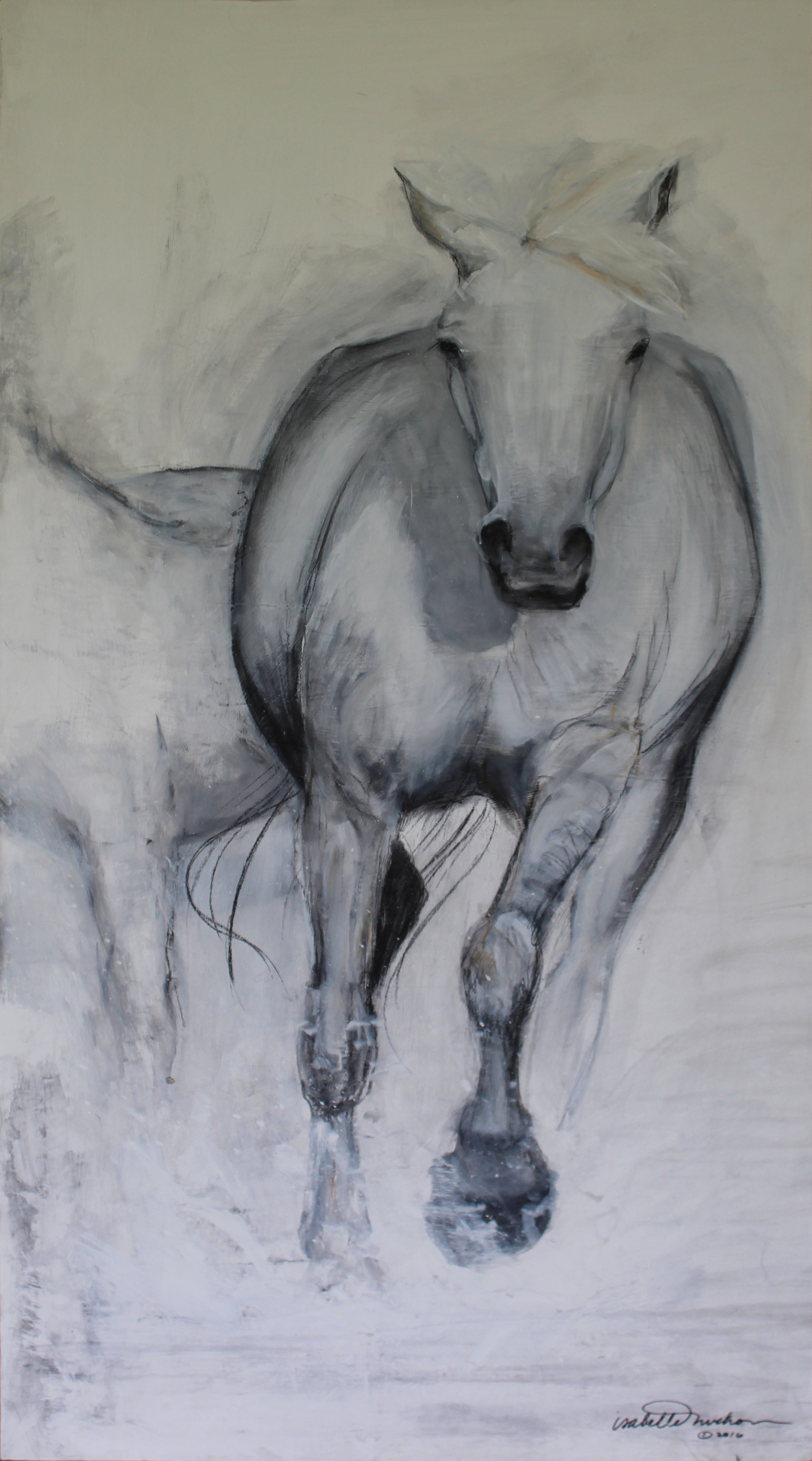 Original charcoal and gesso painting depicting the gentle and graceful horse of the Camargue.