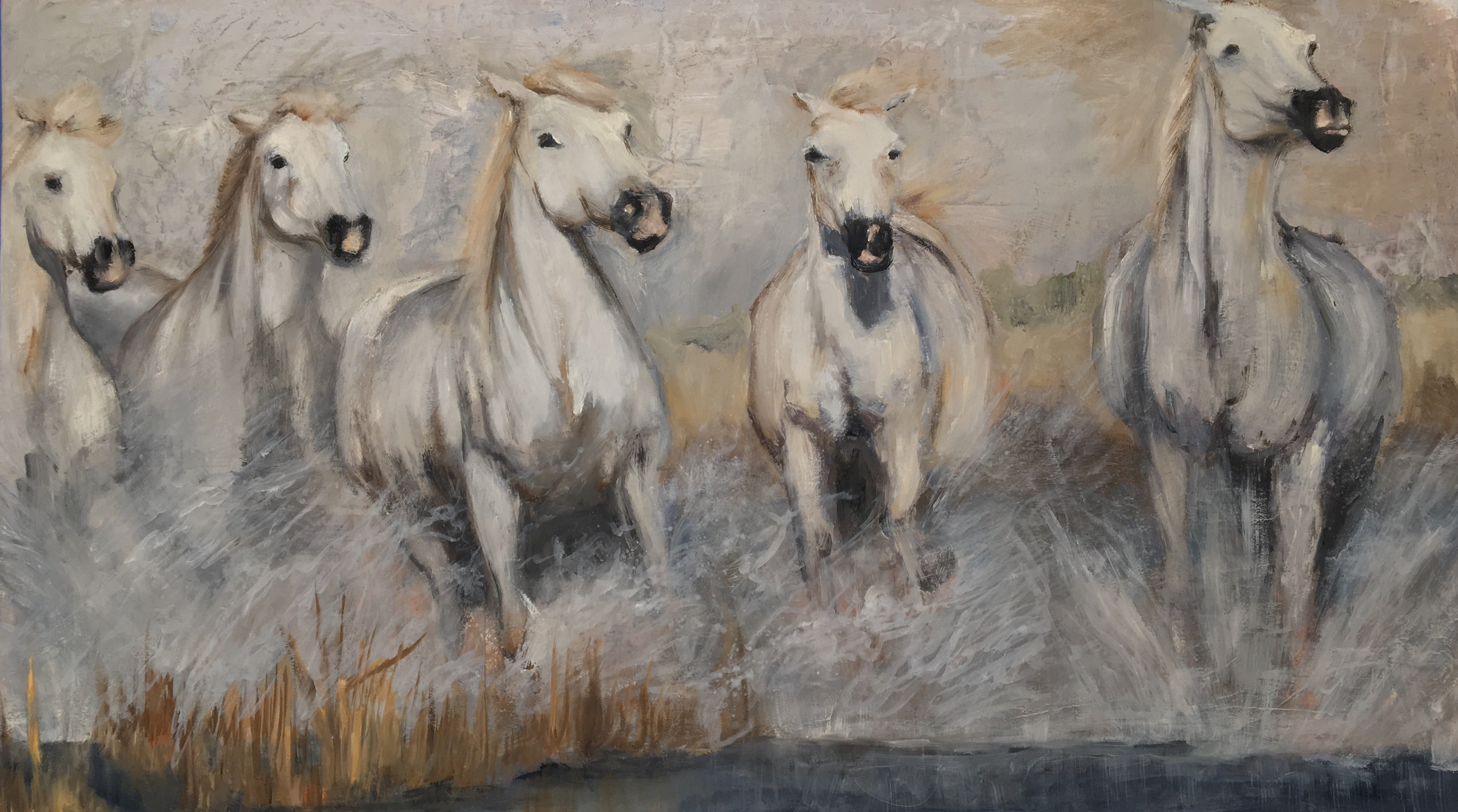 Galloping white horse herd in the Camargue.