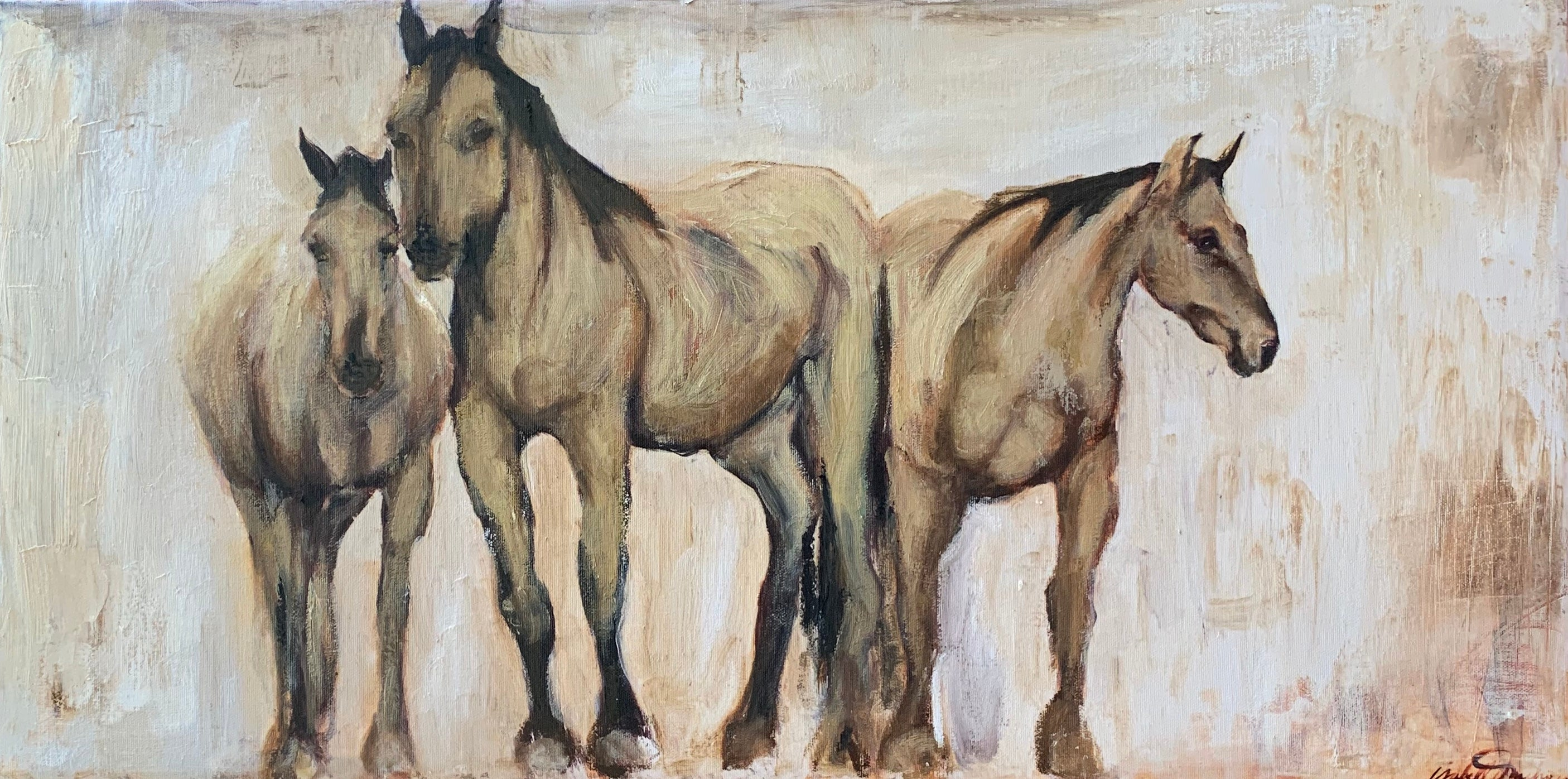 The buckskin wild Kiger horses of the Steens Mountain, three horses congregating not far from the larger herd, watching me, watching them. A statement piece for any space.
