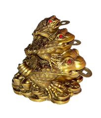 Feng Shui Money Frog By vastumiracles