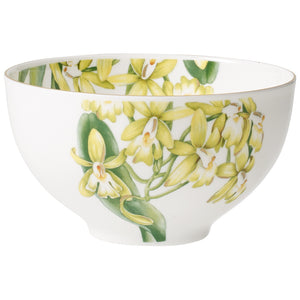 Amazonia bowl 4  pieces 0.7L