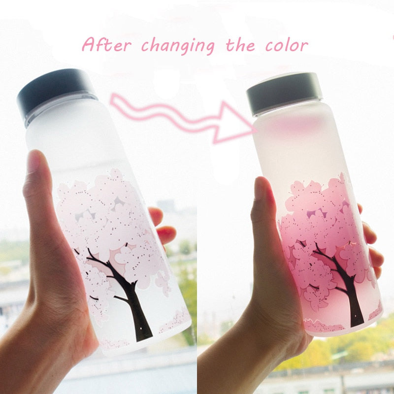 Color Changing Gradient Cherry Glass Water Bottle With Protective Bag | The Magic Glow Co.