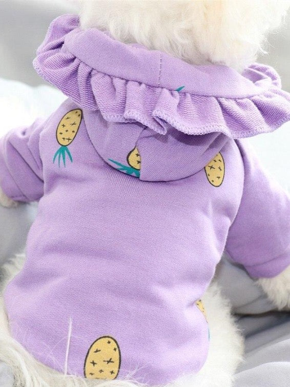 Pastel Pet Hoodie For Small Dogs | The Magic Glow Co.