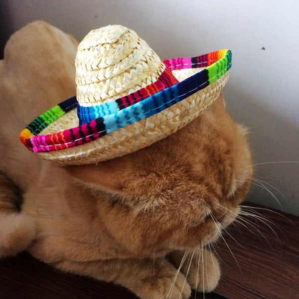 Luxury Straw Knitting Pet Hat - The Magic Glow Co.
