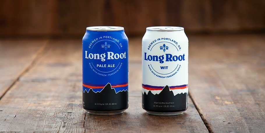 Long Root Ale and Long Root Wit cans on wooden surface